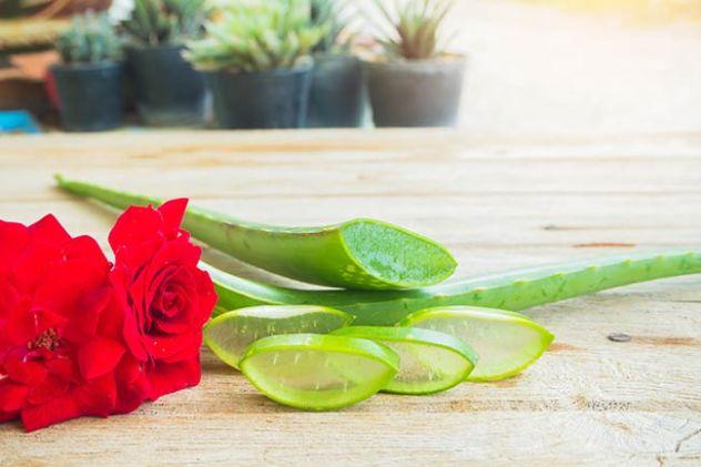 rosewateraloevera